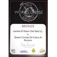 WCA 2015 bronze