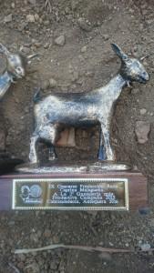 premios ganaderia agrogant (2)